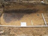 Które okazały się reliktami osady Kultury Ceramiki Wstęgowej Rytej