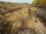 Nieprzyjazne piaski Sudołu
