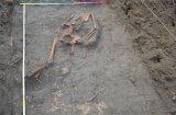 Uwaga, makabryczne. Do ossuarium w XVIII wieku wrzucono prawie całe ciało. Przy przenoszeniu odpadła głowa i noga.  Policja nie chciała przyjąć zgłoszenia o zbeszczeszczeniu zwłok, stwierdziła przedawnienie.